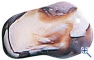 Trommelstein Botswana Achat